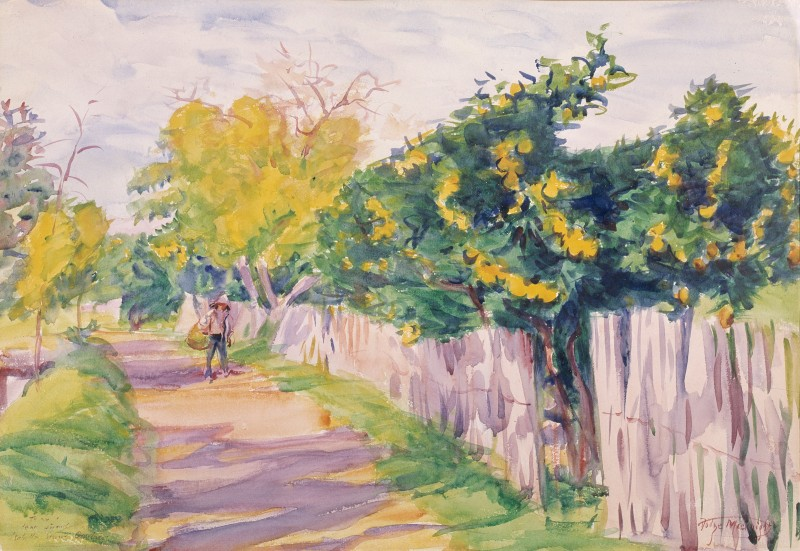A Lane Through an Orange Grove, Orihuela, 1904, Macknight Room, Gardner Museum